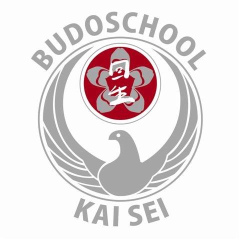 Karate en budoschool Kai Sei